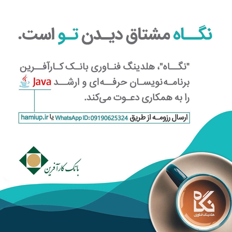 متخصصان حرفه ای Java