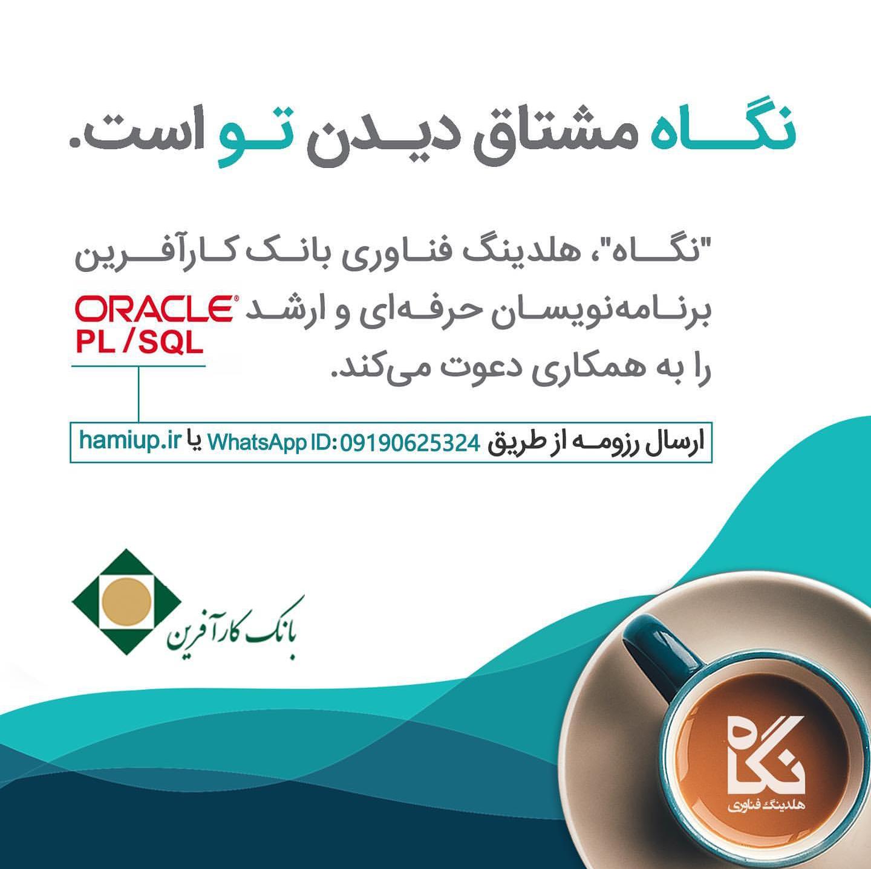 متخصصان Oracle PL/SQL